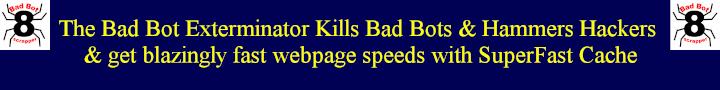 kill bad bots
